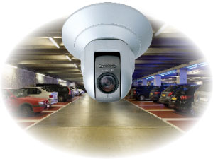 Security Cameras Will County
