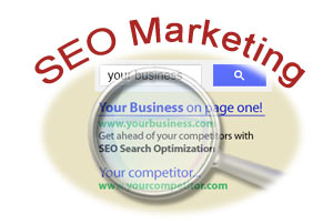 Search Engine Optimization SEO marketing specialists -Chicago IL
